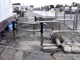 20110402_東日本大震災_船橋三番瀬海浜公園_閉鎖_1037_DSC00139