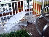 20110530_ビニール傘_カサ_0757_DSC02631