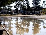 20110313_東日本大震災_袖ヶ浦団地_袖ヶ浦運動公園_1137_DSC09520