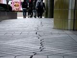 20110320_東日本大震災_幕張新都心_地震被害_1303_DSC08348