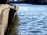 20110326_東日本大震災_船橋市栄町2_堤防破壊_1551_DSC08900T