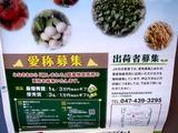 20110430_船橋市行田3_農産物直売所_JAちば東葛_1417_DSC08988