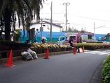 20110510_船橋市_ららぽーとTOKYO-BAY前_花壇_0742_DSC00957