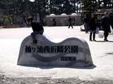 20110313_東日本大震災_袖ヶ浦団地_袖ヶ浦西公園_水_1123_DSC09445