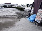 20110402_東日本大震災_船橋三番瀬海浜公園_閉鎖_1037_DSC00142