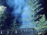 20110114_千葉市花見川区_検見川神社_どんど焼き_2049_DSC01693