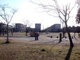 20110109_習志野市袖ヶ浦3_西近郊公園_どんど焼き_0911_DSC00438