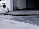 20110312_東日本大震災_葛南地域整備センタ_液状化_1726_DSC09262