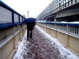 20080203_首都圏_船橋市_大雪_積雪_1232_DSC07214