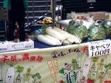 20110430_ららぽーとTOKYO-BAY_産地応援野菜即売会_1303_DSC08674