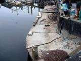20110402_東日本大震災_船橋市日の出1_震災_被害_1128_DSC00340