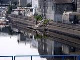 20110402_東日本大震災_船橋市西浦2_堤防破壊_1007_DSC00008