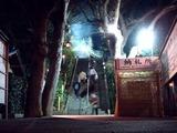 20110114_千葉市花見川区_検見川神社_どんど焼き_2031_DSC01665