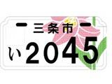 20100601_ご当地ナンバー_オリジナルナンバープレート_090