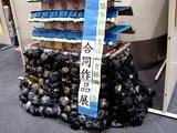 20110219_ららぽーと_特別支援学級_合同作品展_1628_DSC06801