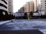 20110116_船橋市_積雪_雪化粧_寒気_冬型_1017_DSC02421