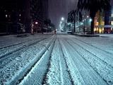 20110214_ららぽーとTOKYO-BAY_大雪_2247_DSC06381