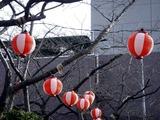20110312_三井ガーデンホテルららぽーと_ちょうちん_1608_DSC08775