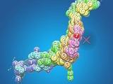 20110311_東日本巨大地震_地震速報_255924386T