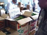 20110604_船橋中央卸売市場_ふなばし楽市_0859_DSC02814