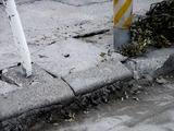 20110402_東日本大震災_船橋三番瀬海浜公園_閉鎖_1037_DSC00154