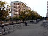 20110311_東日本巨大地震_浦安_被害_092