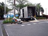 20110510_船橋市_ららぽーとTOKYO-BAY前_花壇_0741_DSC00952