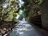 20110313_東日本大震災_海浜香澄公園_京葉道路脇_1206_DSC09716
