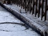 20110313_東日本大震災_袖ヶ浦団地_一戸建て_液状化_1140_DSC09536
