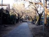 20110203_船橋市西船1_山野浅間神社_節分_豆まき_1601_DSC04892
