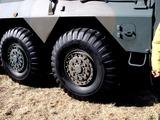 20110109_陸上自衛隊_習志野演習場_降下訓練始め_1206_DSC00958