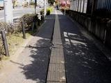 20110316_東日本大震災_船橋競馬場前_道路歪み_1047_DSC06814