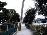 20110402_東日本大震災_船橋三番瀬海浜公園_閉鎖_1033_DSC00126