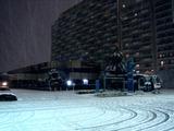 20110214_ららぽーとTOKYO-BAY_大雪_2246_DSC06375