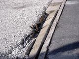 20110326_東日本大震災_船橋市日の出2_被災_1529_DSC08791