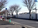 20110109_船橋市三山8_ヤオコー船橋三山店_NTT_0950_DSC00531T