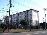 20110109_習志野市袖ヶ浦3_西近郊公園_どんど焼き_0909_DSC00434