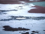 20110312_東日本巨大地震_若松公園テニス_液状化_1658_DSC09082