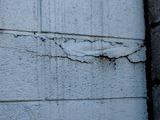 20110326_東日本大震災_船橋市栄町2_被災_被害_1555_DSC08912T