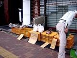 20110206_船橋市本町7_日本振興銀行船橋店前_野菜直売_1223_DSC05216