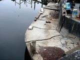20110402_東日本大震災_船橋市日の出1_震災_被害_1128_DSC00338