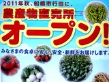 20110430_船橋市行田3_農産物直売所_JAちば東葛_1417_DSC08986