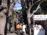 20110102_千葉市花見川区_検見川神社_初詣_1316_DSC09540