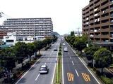 20070512_船橋市行田3_農産物直売所_JAちば東葛_1210_DSC05076