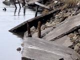 20110402_東日本大震災_市川市二俣新町_堤防震災_1053_DSC00237