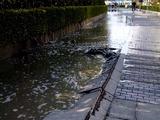 20110311_東日本巨大地震_海浜幕張_ホテルマンハッタン前_255934920T