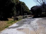 20110313_東日本大震災_海浜香澄公園_液状化_1158_DSC09657
