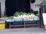 20110605_船橋市海神6_農産物直売所_野菜販売_1056_DSC03950