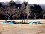 20110109_習志野市袖ヶ浦3_西近郊公園_どんど焼き_0911_DSC00442