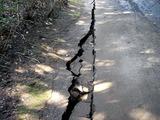 20110313_東日本大震災_海浜香澄公園_地割れ_1201_DSC09682